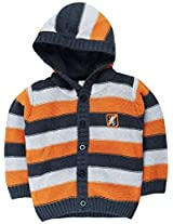 Infant Boys Sweater With Striper - Multi Colour (2 - 3 Years)