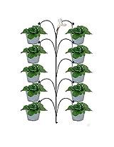Pepper Agro DIY1013 Soil Drip Irrigation Kit for 10 Plants