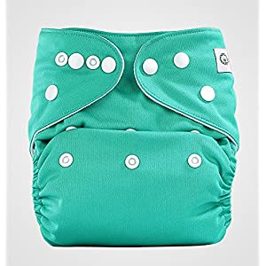 Bumberry Pocket Style Cloth Diaper (Blue Green) + One Microfiber Insert