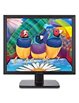 ViewSonic VA951S 19-Inch Screen LED-Lit Monitor
