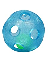 Gnawsome Rattle Ball, 4-inch (Blue)