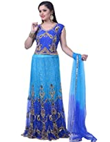 Royal Blue and Deep Sky Blue Net and Jacquard Bridal Lehenga Choliin Medium Size