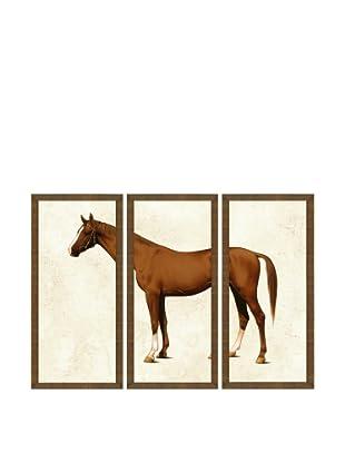 ABC Horse Triptych