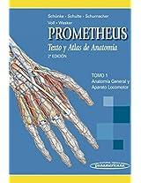 Texto y atlas de anatomia / Text and Atlas of Anatomy: Anatomia General Y Aparato Locomotor / General Anatomy and Musculoskeletal System: 1