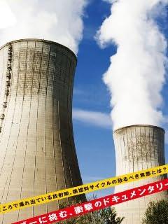 東電役員OB海外バブル生活 福島原発事故900日目の「天国と地獄」 vol.3