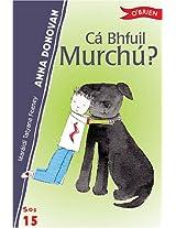 Ca Bhfuil Murchu?: 15 (Sraith SOS)