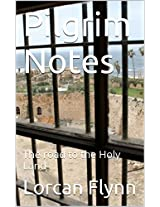 Pilgrim Notes: The road to the Holy Land