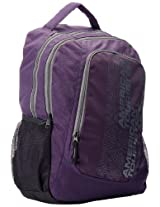 American Tourister Code Purple and Grey Casual Backpack (R51 (0) 81 007)