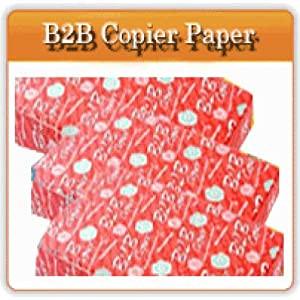 B2B Copier Paper A4 Size (Packet of 500 Sheets)