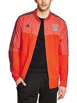 adidas Chaqueta Deporte FC Bayern München Anthem