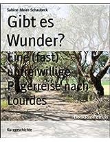 Gibt es Wunder?: Eine (fast) unfreiwillige Pilgerreise nach Lourdes