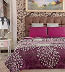 Home Candy Floral Cozy Double Bed Mink Blanket - Multicolour (MNK-BLN-508)