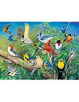 Buffalo Games Hautman Brothers: Birds Eye View - 1000 Piece Jigsaw Puzzle by Buffalo Games