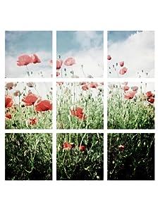 "Art Addiction 9-Panel Poppies, Blue/Red/Green, 12"" x 12"""
