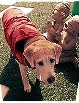 Rainy Day Dog Raincoat