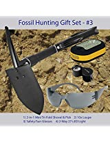 Fossil Hunting Tool Kit