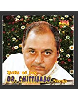 Bells Of Joy- Dr. Chittibabu (Veena)