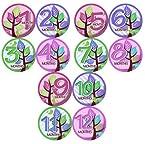 Monthly Onesie Sticker Set of 12 - GIRLS TREES PURPLE GREEN PINK Baby Month Onesie Stickers Baby Shower Gift Photo Shower Stickers, baby shower gift by OnesieStickers