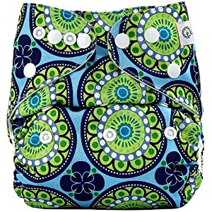 Bumberry Pocket Cloth Diaper With Insert Green