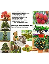 Imported 4 Types Bonsai Tree and 4 Types Bonsai Fruit Tree Seeds - Combo Of 8 Tree, Sold By- VasuWorld