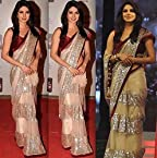 Priyanka Chopra Screen Award Net Designer Saree