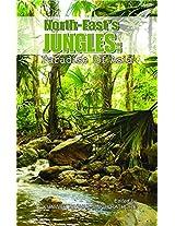 "North-East""s Jungles Paradise of Aaia"