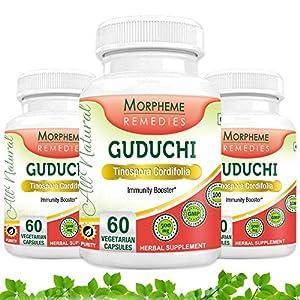 Morpheme Guduchi Supplements For Immune System - 500mg Extract - 60 Veg Capsules - 3 Combo Pack