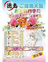 Tokushima Gotouctitenki Harenokekkonshiki Hidorisagashi eMook 1999-2013
