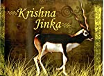 Children's book- Title :Krishna Jinkaâ€