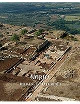 Norba: Domus E Materiali (Atlante Tematico Di Topografia Antica. Supplementi)