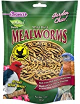 F.M. Brown's Fixins Mealworms, 3-Ounce, Tub of Fixins Mealworms