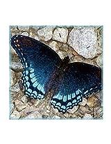 Leaf Designs Blue Butterfly On Pebbles Trivet - Set Of 6