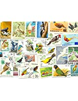 THEME ~ BIRDS ~ 50 Different STAMPS ~ ALL LARGE