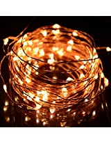 12V DC 33Ft Copper Wire LED String Light ,Decorate for Christmas,Wedding ,Halloween, - Includes Power Adapter, (warm white)