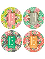 Lucy Darling Shop Monthly Baby Sticker Baby Girl Floral Design Months 13 24