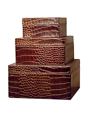 Pomeroy Set of 3 Embossed Alligator Square Boxes