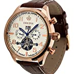 ESS Mens Brown Leather Classic Luxury Automatic Mechanical Watch WM374 Rose Gold