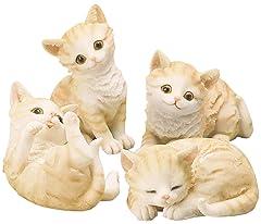 生命の神秘? 生まれてくる子ネコの毛色がみんな違う理由