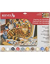 Reeves Resting Cat Acrylic Painting by Numbers Set, Large