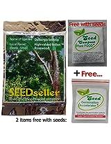 SEED Seller: Dalbergia latifolia Seeds - an Economically important, Premium-quality timber species the High-valued East Indian Rosewood (Beete, Veeti, Eeti, Kariveeti, Sitsal) Seeds for growing (25)
