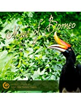 Magic of Borneo - Nature Sound Audio CD