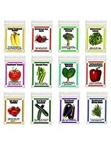 Heirloom Organic Garden Vegetable Seeds NON GMO Easy Growers