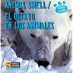 Animal Smell / El Olfato En Los Animales: El Olfato En Los Animales (Animals and Their Senses / Los Sentidos De Los Animales)