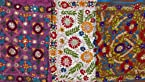 Lot of Three Phulkari Scarves from Punjab with Threadwork and Sequins - Chiffon