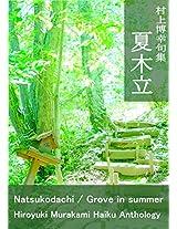 murakamihiroyukikusyuunatsukodachi: groveinsummer