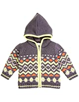 Infant Boys Full Sleeve Front Zipper Sweater With Hood, Multi Colour (0-6 Months)