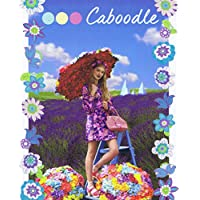Caboodle No. 3 2016 小さい表紙画像