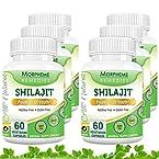 Morpheme Shilajit Capsules Fountain Of Youth - 500mg Extract - 60 Veg Capsules - 6 Bottles