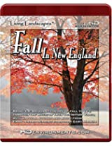 Living Landscapes: Fall In New England [for HD DVD players ONLY]