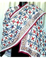 Phulkari Dupatta on Chanderi Fabric -White